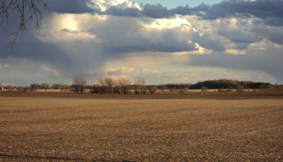 Spring begins to roll across the prairie.